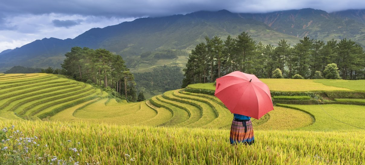 Meet travelers, discover the real Asia